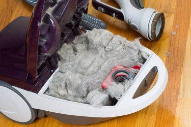 Почему пылесос не всасывает пыль?